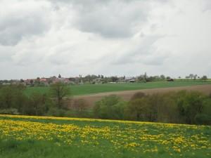 春の古城街道